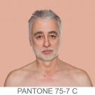 humanae_pantone_75-7_c