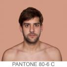 humanae_pantone_80-6_c